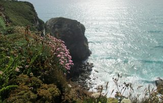 Cliff top Walk