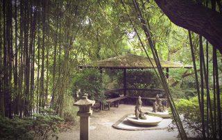 Japenese Gardens 2