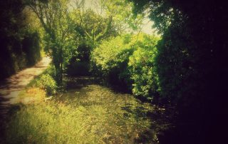 stream walk with filter